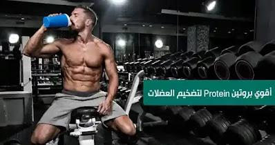 اقوىprotein  بروتين لتضخيم العضلات