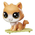 Littlest Pet Shop Small Playset Pouncy Sipton (#78) Pet