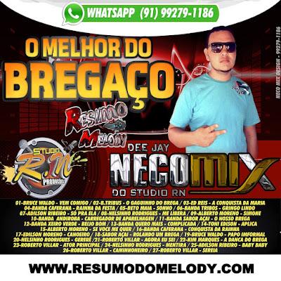 CD BREGAÇO DJ NECO MIXDO STUDIO R-N - MP3 ( WWW.RESUMODOMELODY.COM )