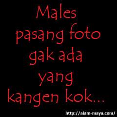 dp WA males pasang foto