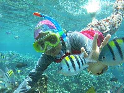 Wisata taman laut Olele Gorontalo