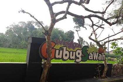 Wisata Gubug Sawah Ngunut Tulungagung