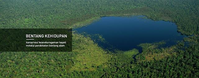 konservasi lingkungan, lahan gambut