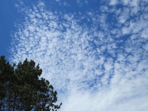 mackeral clouds