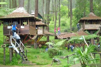 Wisata Rumah Pohon Bekasi, Objek Wisata Alam Yang Lengkap Untuk Buah Hati