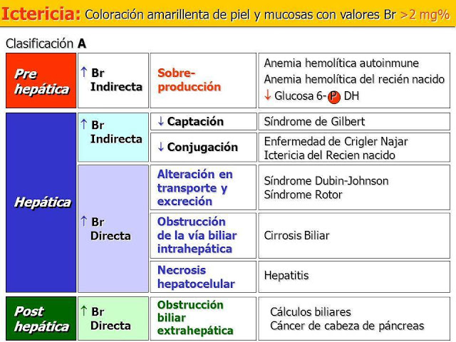 ICTERICIA: Aprende sus generalidades, causas, manifestaciones clínicas, laboratorio y tratamiento.