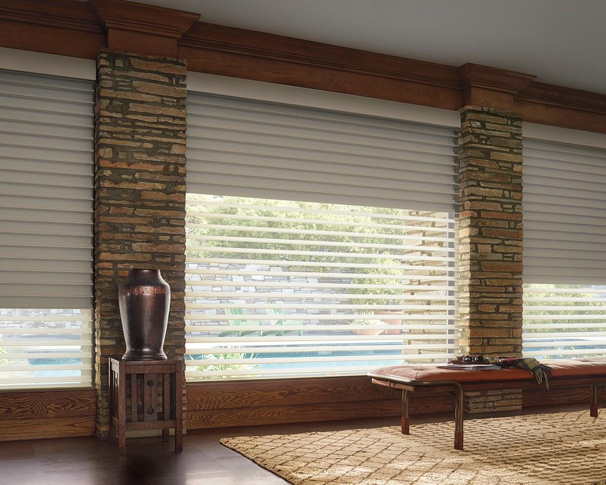 Window Fashions Hunter Douglas Silhouette A Deux Shade