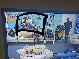 BBNaija Latest Updates: Kiddwaya And Erica Loved Up, See What There Caught Doing