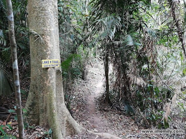 Hiking Bukit Sapu Tangan via Lake Trail