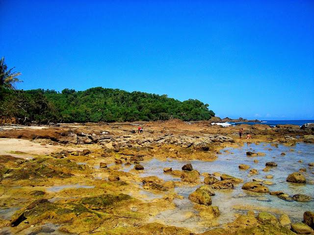 pantai wedi ombo wonosari yogyakarta