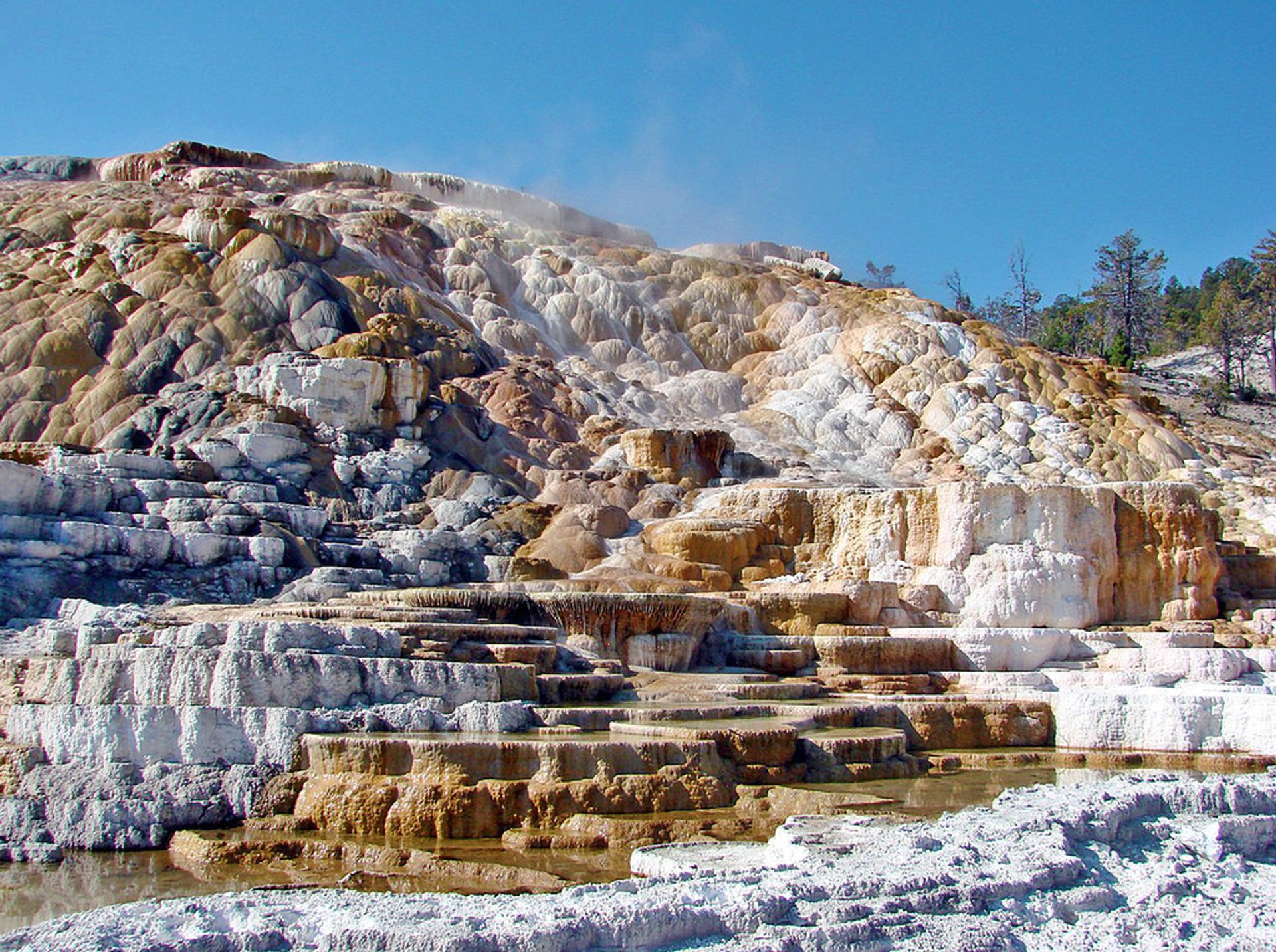 Mammoth Hot Springs Complex USA