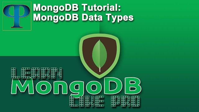MongoDB Data Types – progrramers explained