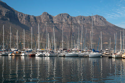 Yachts moored in Hout Bay Harbour Cape Town