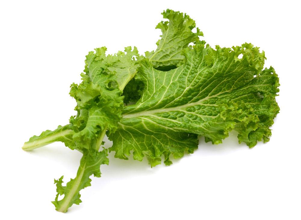 Os benefícios das folhas de mostarda para a saúde incluem fornecer ao corpo antioxidantes, desintoxicar o corpo, controlar os níveis de colesterol, fornecer ao corpo as fibras necessárias e fonte de fitonutrientes. Outros benefícios incluem suporte ao sistema imunológico, tratamento da psoríase, tratamento da menopausa, tratamento de distúrbios respiratórios, fornecimento de nutrição e vitamina K. necessária ao corpo. A mostarda teve origem na região do Himalaia, no subcontinente asiático, há mais de 5.000 anos, e foi cultivada pela primeira vez em Sichuan, China. A mostarda é um vegetal diversificado e saboroso, com cores que vão do verde claro ao escuro. São vegetais folhosos, semelhantes à versão indiana das folhas de espinafre e estão intimamente relacionados com o repolho, a couve e o nabo. Elas podem tolerar uma variedade de climas e condições meteorológicas. As folhas de mostarda possuem um grande número de variedades, variando do verde ao roxo-avermelhado, com folhas variando em tamanho e forma.  A culinária japonesa destaca a folha de mostarda em conserva e usando-a como condimento. A culinária indiana incorpora folhas de mostarda em um prato nativo feito com uma mistura dessas folhas e pimentões verdes, enquanto na China as folhas de mostarda são usadas em pratos refogados. As folhas de mostarda são consideradas um superalimento devido ao seu alto conteúdo nutricional; é uma fonte rica em fibras, minerais, vitaminas e fitonutrientes. As propriedades antioxidantes da mostarda são muito potentes e ajudam a proteger o corpo de várias doenças. Aqui estão 11 razões pelas quais as folhas de mostarda devem fazer parte de sua dieta. 11 Incríveis Benefícios Das Folhas De Mostarda Para a Saúde  1. Antioxidantes As células dos radicais livres causam danos graves ao DNA das células do corpo. O estresse oxidativo causado por esses radicais livres prejudica as funções vitais e os tecidos do corpo. Esse dano é irreversível e pode levar a doenças como câncer e diabetes. A