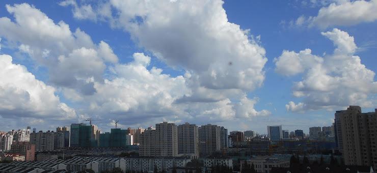 上海は久し振りの晴れ