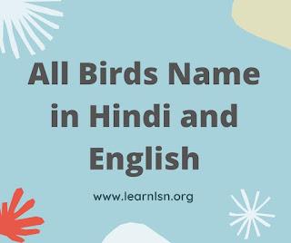 Birds Name Hindi and English