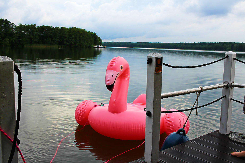 Mister Pink, der aufblasbare Flamingo, auf dem Gudelacksee. BunBo, das Bungalowboot – Hausbootferien mit Smutje Paul, dem Kapitän und Mister Pink [Gudelacksee, Möllensee] | Arthurs Tochter kocht von Astrid Paul. Der Blog für Food, Wine, Travel & Love