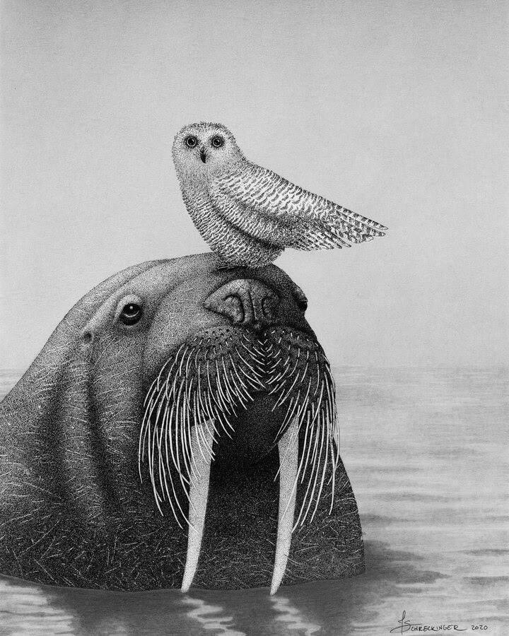 01-Snowy-Owl-and-the-Walrus-Juliet-Schreckinger-www-designstack-co