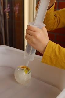 Criança a deitar água para cima das flores congeladas, com uma seringa grande
