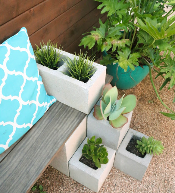 Easy DIY Succulent bench using cinder blocks and stained wood. Cheap and quick backyard garden project for beginners. Great spring garden project!