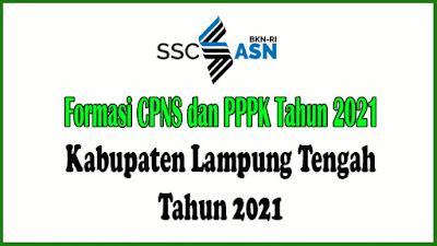 Alokasi Formasi CPNS dan PPPK Kabupaten Lampung Tengah Tahun 2021