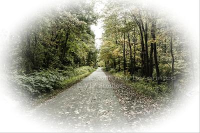 Farmington Trail _7795 Photo Print