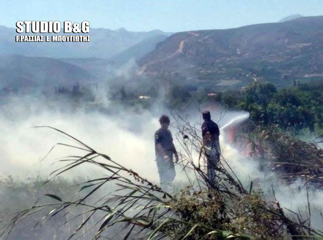 Φωτιά σε κολόνα της ΔΕΗ στην Κάντια Ναυπλίου
