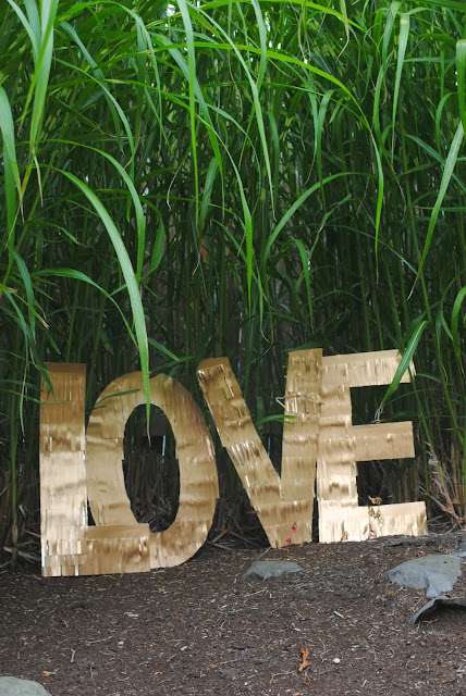 Love among the reeds for your wedding. www.fizzyparty.com
