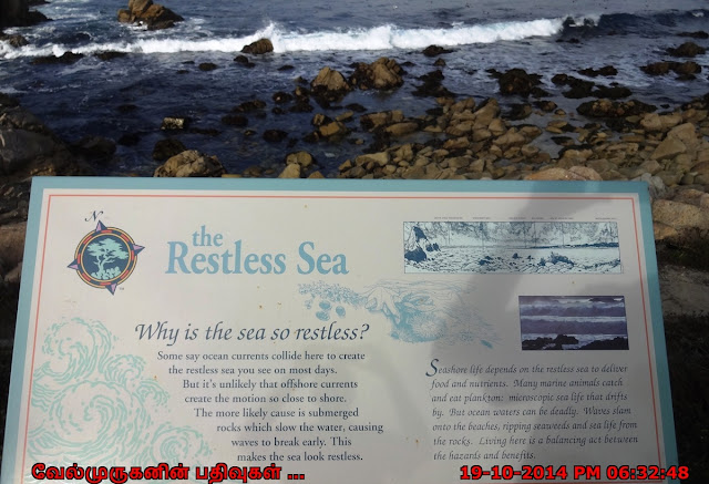The Restless Sea in 17 mile drive
