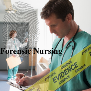 Forensic Nursing Career At A Glance Eight Great Forensic Nurse Specialties