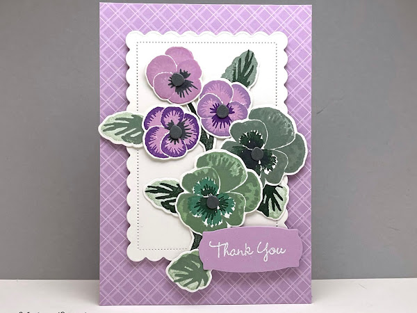 NEW PRODUCTS | Pansy Patch Bundle | Thank You!