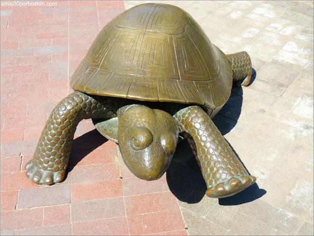 Escultura de la Tortuga en Copley Square, Boston