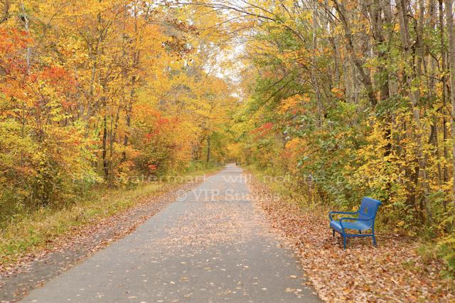 Farmington Trail _8057