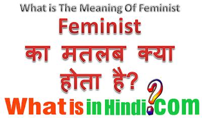 Feminist का मतलब क्या होता है