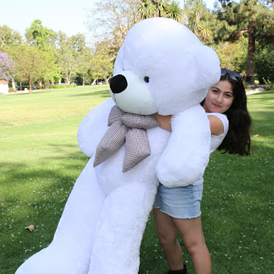 Giant Teddy... one of life's most huggable experiences!