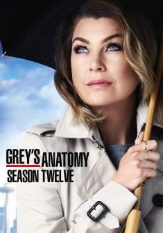 Grey's Anatomy 12ª Temporada Torrent – WEB-DL 720p Dual Áudio