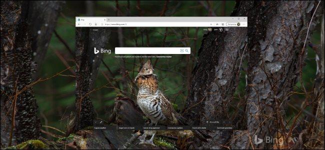 خلفية Bing اليومية في المتصفح وسطح مكتب Windows 10.