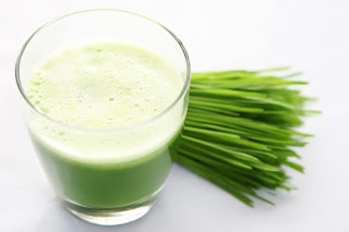 best wheatgrass juicer buy