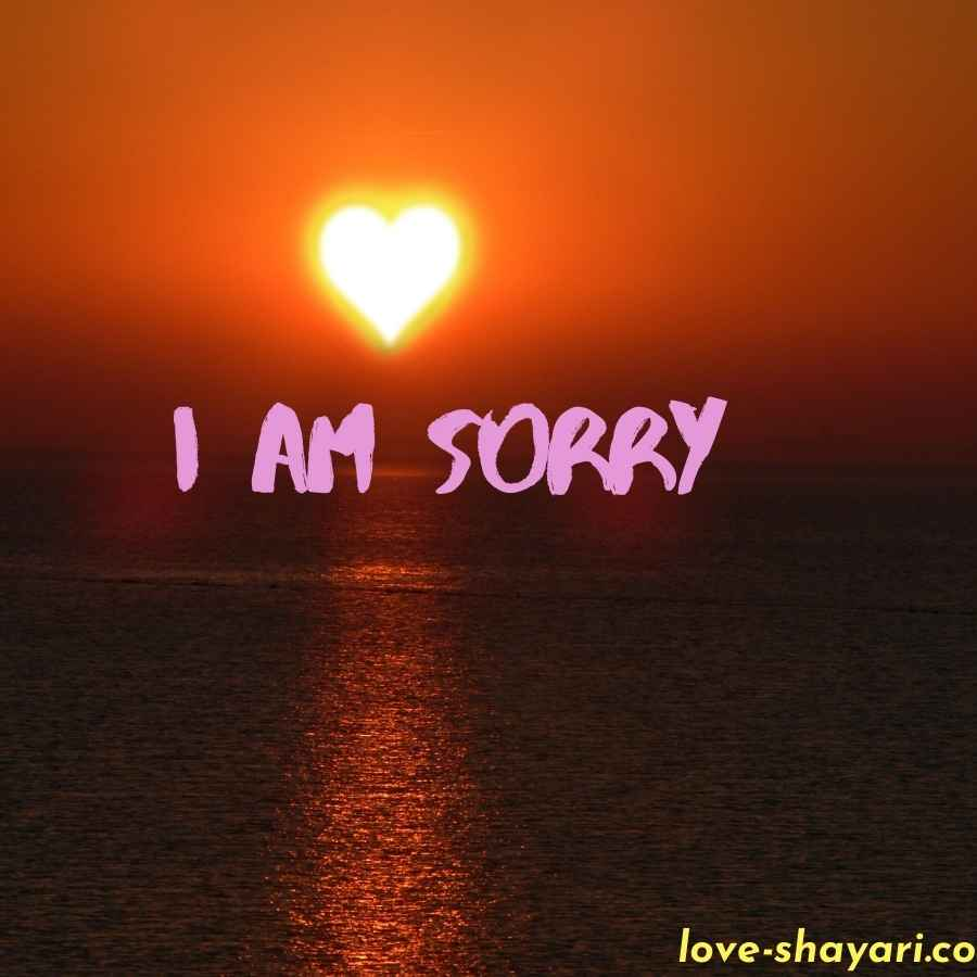 i am sorry flowers images