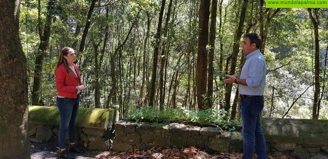Medio Ambiente rehabilita el vallado de Los Tilos