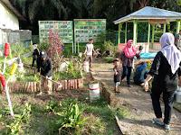 Menuju Desa Sehat, Mahasiswa KKN UNA Buat Taman Obat Di Desa Perk Bandar Pulau
