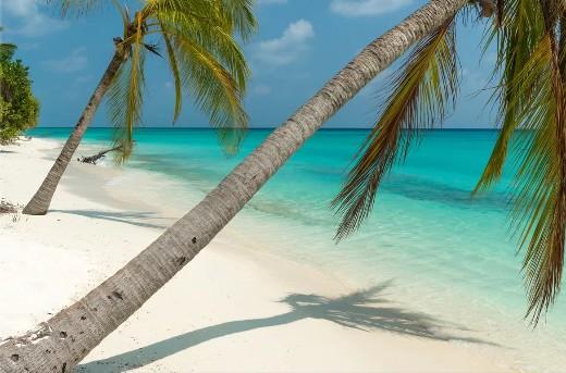 Turquoise Tropical Island Ocean Photo Print Canvas Art