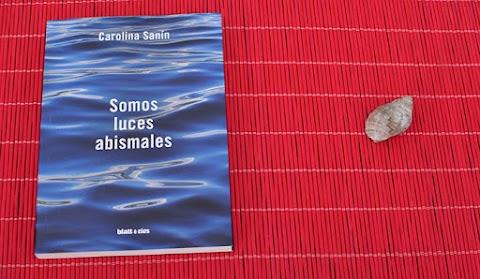 «Somos luces abismales», de Carolina Sanín (Blatt Ríos)