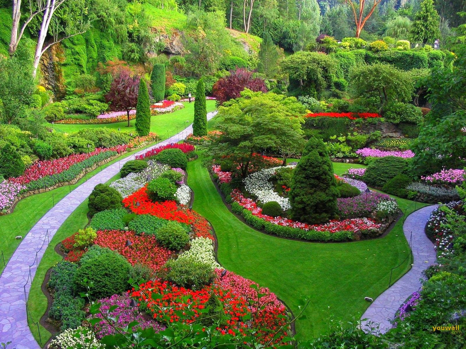 Sweet And Colorful Rose Garden High Resolution Pictures Are Ready Here To Download So Enjoy