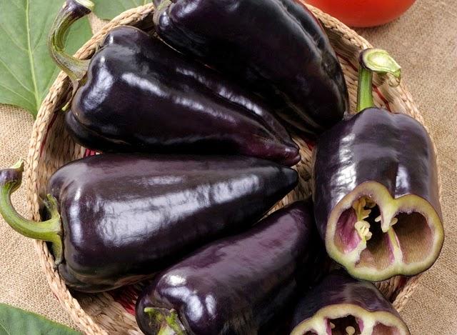 harvested sweet black peppers