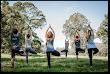 Benefits of Meditation Courses
