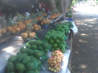 Imfino Yethu your green grocer in St. Lucia