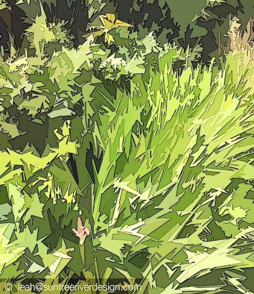 Backyard greens from 02124