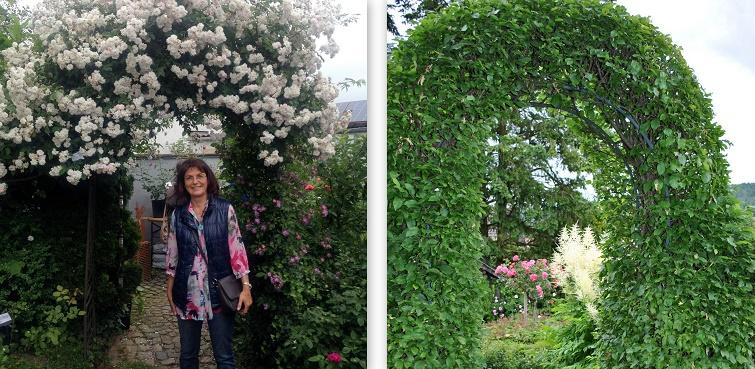 Willkomensgruß Rosenbogen für Kletterpflanzen