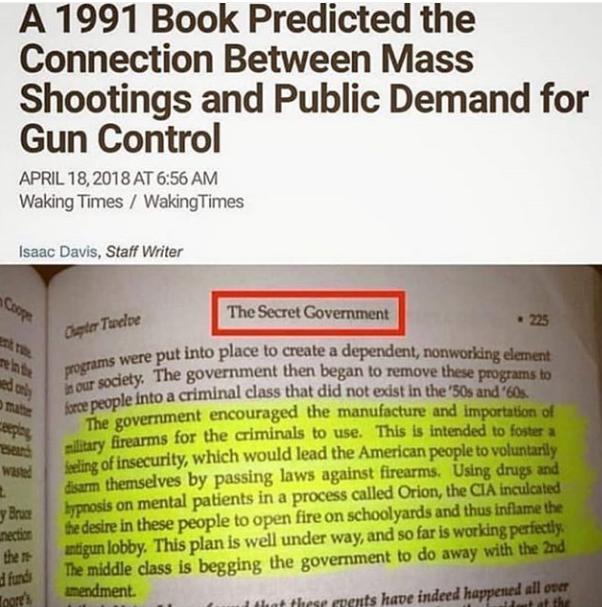 GUN%2BCONTROL%2B%25282%2529.png